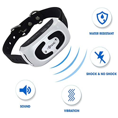MONTAUR 2019 Automatic Bark Collar - Upgraded Rechargeable Barking Collar for Dogs - Newest Version Waterproof Bark Control Collar - Humane and Safe Dog Bark Collar for Dogs of All Sizes