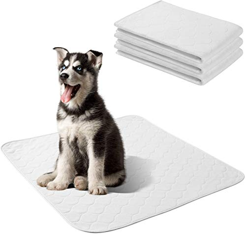 Yangbaga Empapadores Perros, Pañales Perro Lavable y Reutilizables Empapadores de Entrenamiento para Cachorros-4pc (60 * 60cm)
