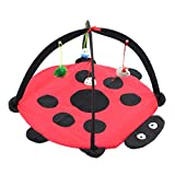 POPETPOP Interactive Cat Play Mat with Hanging Toys - Multi-Function Beetle Shape Pet Cat Hammock with Bell Ball - Cat Activity Center for Cat Kitten Exercise - Pet Supplies