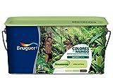 BRUGUER 5056892 Pintura PLÁSTICA Colores Mundo Amazonas VDE.Nat. 4 L, Negro