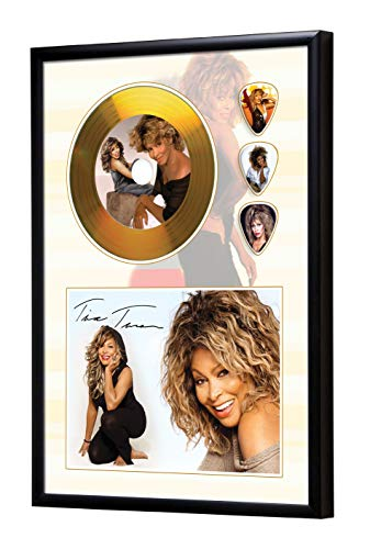 SH Range Tina Turner Framed CD Goldene Schallplatte & Guitar Picks Display