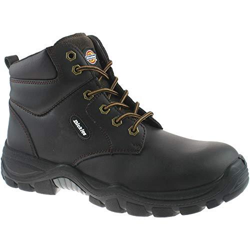Dickies Mens Werkkleding Newark Safety Boot Bruin FA9003BR