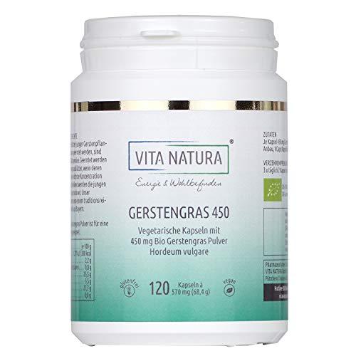 Vita Natura Gerstengras Bio 450 mg Vegikapseln aus Deutschland 1er Pack (1 x 120 Stk.)