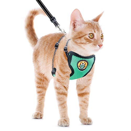 AWOOF Cat Harness and Leash Escape Proof, Adjustable Cat Kitten Puppy Walking Jacket with Metal Leash Ring, Soft Breathable Small Pet Vest (M)