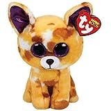 TY Beanie Boo Plush - Pablo the Chihuahua 6