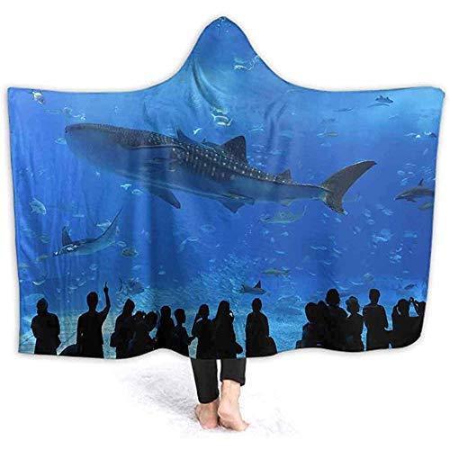 ZQLXD 101,6 x 127,7 cm große Decke mit Kapuze für Aquarium, Fenster in Okinawa Japan, bedruckte Fleecedecke