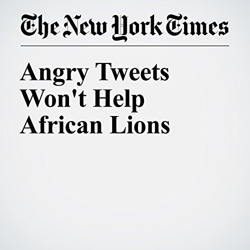 Angry Tweets Won't Help African Lions audiobook cover art