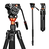 Fluid Head Tripod, COMAN Video Tripod Aluminium Alloy 70.8 inch for Canon Nikon Sony DSLR Camera