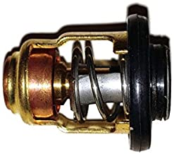 Yamaha OEM Thermostat Assembly 6CE-12411-00-00