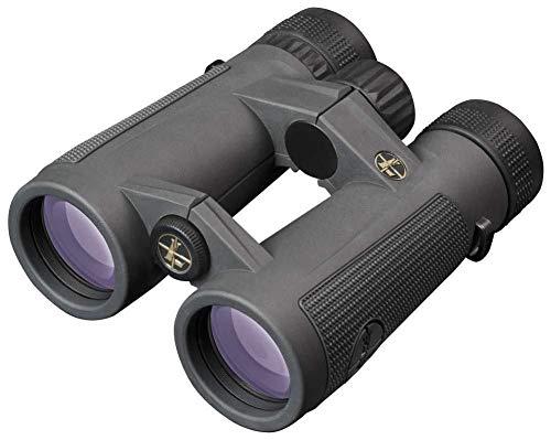 Leupold BX-5 Santiam HD 8x42mm Binocular, Sitka Subalpine (174482)