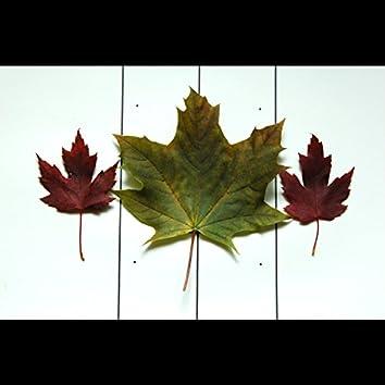 Leaf Hate