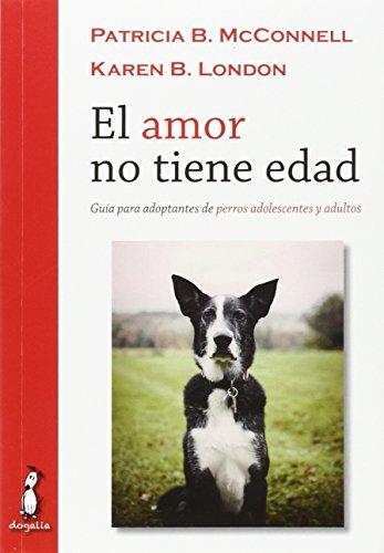 El amor no tiene edad: Guía para adoptantes de perros adolescentes y adultos