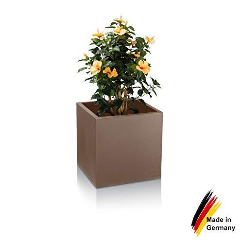 Pflanzkübel DECORAS CUBO 50 Kunststoff Blumenkübel – 50x50x50 cm – cappuccino matt – frostsicher & UV-beständig (8 Jahre Garantie) – geeignet für Innen- & Außenbereiche – Premium Blumenkübel