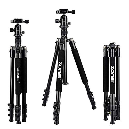 Zomei Q555 62.5'' Camera Tripod,Lightweight and Compact Aluminum Portable Travel Tripod with 360 Degree Ball Head for Vlog Nikon Canon Sony All DSLR and Digital Camera