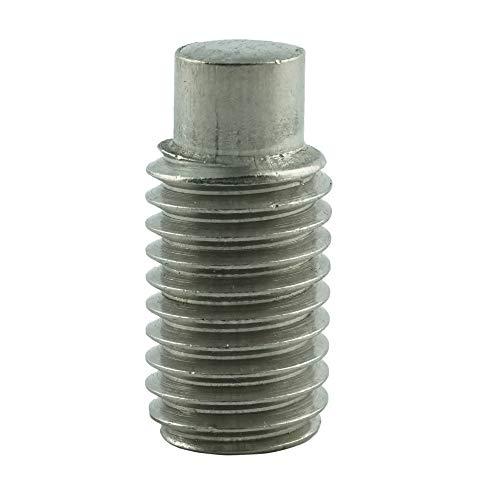 Eisenwaren2000   M10 x 16 mm Gewindestift mit Innensechskant und Zapfen (10 Stück) - Madenschrauben DIN 915 - ISO 4028 - Gewindeschrauben - Edelstahl A2 V2A - rostfrei