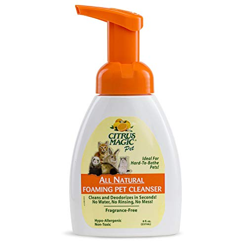Citrus Magic Foaming