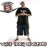 White Trash Renegade [Explicit]
