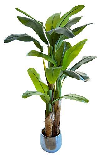 Bananera Artificial, Elaborados con los Mejores Materiales, Ideal para Decoración de hogar, Planta Artificial (180 cm)