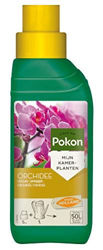 Pokon Orchideen-Flüssigdünger, Flüssige Spezialnahrung für alle Orchideenarten mit Extra Magnesium und Eisen, 250ml