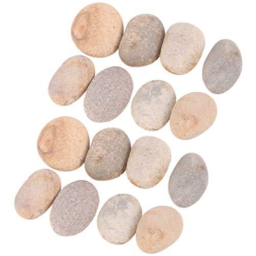 Healifty 16Pcs Natürliche Felsen zum Malen Güte Felsen Flusssteine ??Handwerk Kunsthandwerk Felsmalerei Lieferungen für Kinder Maler Kinder DIY Polieren Kieselsteine ??Gemischte Farbe