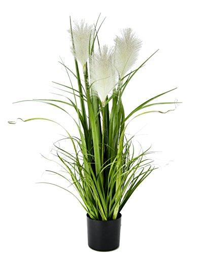 Flair Flower Pampasgras Im Topf, Polyester, Kunststoff, Weiß, 22 x 22 x 80 cm