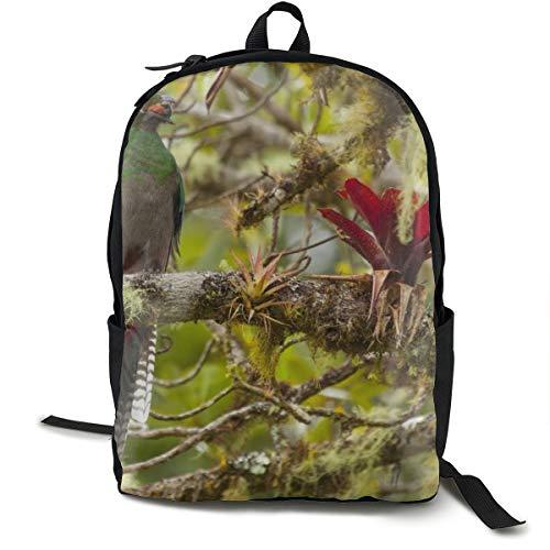 Rucksack mit Vogelschnabel, Insektenfutter, AST, Schule, Büchertasche, Reisen, Laptop, Rucksack für Kinder, Studenten, Erwachsene