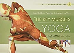 cover of the key muscles of yoga