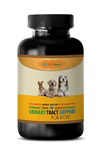 BEST PET SUPPLIES LLC dog urinary care dog food - ADVANCED URINARY TRACT SUPPORT - FOR DOGS - CHEWABLE - POWERFUL DOG FORMULA - cranberry dog pills - 90 Chews (1 Bottle)