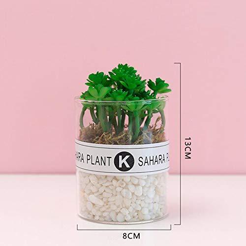 RUIZHISHUHome/Office Interieur met Kunstmatige Planten, Mini Nep Planten, met Transparante Glazen Potten,D
