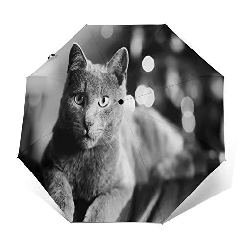 SUHETI Paraguas automático de Apertura/Cierre,Fotografía en Blanco y Negro de un Lindo Gato Gris descansando en el sofá,Paraguas pequeño Plegable a Prueba de Viento