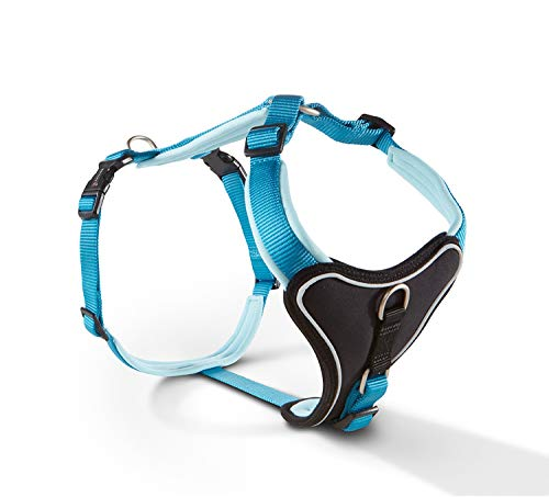 Wolters | Geschirr Professional Comfort in Aqua/Azur | Brustumfang 60 - 70 cm