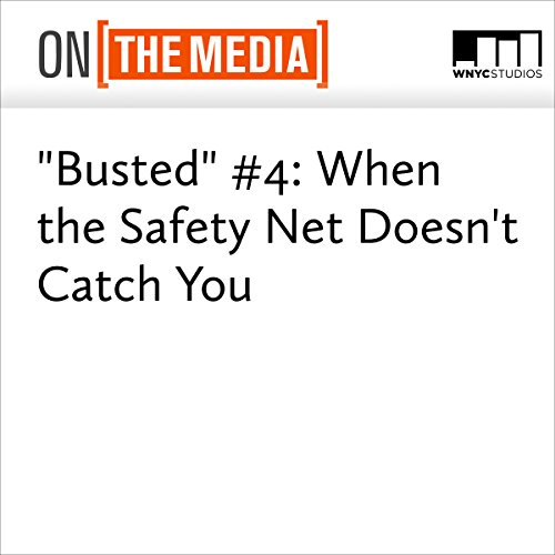 """Busted"" #4: When the Safety Net Doesn't Catch You audiobook cover art"