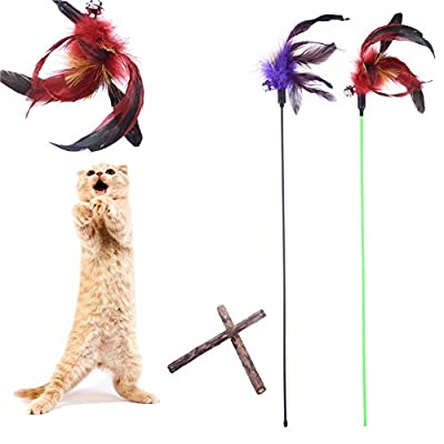 Pet Cat Feather Toy