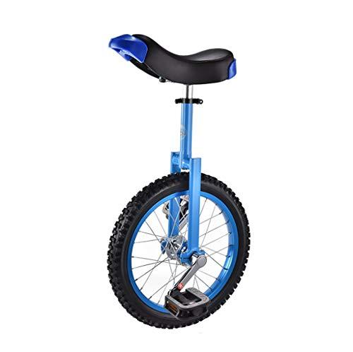 DC les Einräder Schubkarre, 16-Zoll-Kinder-Einrad für Erwachsene, Akrobatik, Fitness-Laufrad (Farbe : B)