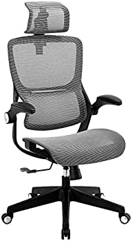 Xishe High Back Mesh Office Chair with Flip up Arms