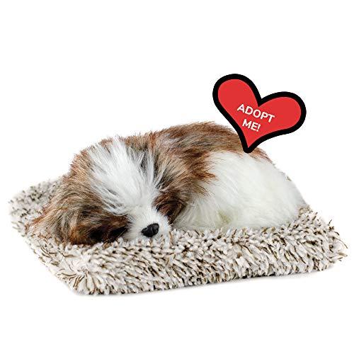 Perfect Petzzz Mini Shih Tzu, Realistic, Lifelike Stuffed Interactive Plush Toy, Electronic Pets, Companion Pet Puppy with 100% Synthetic Fur