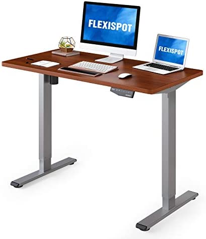 Flexispot Standing Desk 48 x 24 Inches Height Adjustable Desk Electric Sit Stand Desk Home Office product image