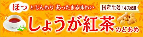 ライオン菓子 しょうが紅茶のどあめスティック 10粒 ×10本