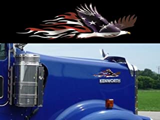 East Coast Vinyl Werkz Bald Eagle American Flag Decals - 2 Piece Set - Peterbilt 379 389 Kenworth W900L W900