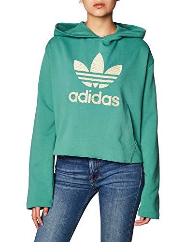 adidas Damen LG Hoodie Sweatshirt, Future Hydro f10, 42