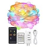 Kit guirnalda DC5V, 66 led-globo, 10m, RGB, WiFi + Bluetooth, RGB