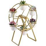Metal Plant Stand with 6 Succulent Planter Pots, Modern Decorative Succulent Display Holder Shelf (Ferris Wheel)