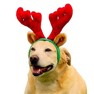 Outward Hound Kyjen PP01763 Holiday Antlers Wearable Dog Accessories, Large, Brown from Kyjen Company