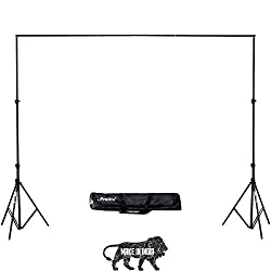 Prolite Background Support Kit (9ft x 9ft) for Photography & Videography with Carry Bag,Prolite