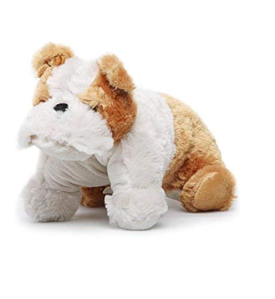 寛容神経義務的Winston the Bulldog 9.5