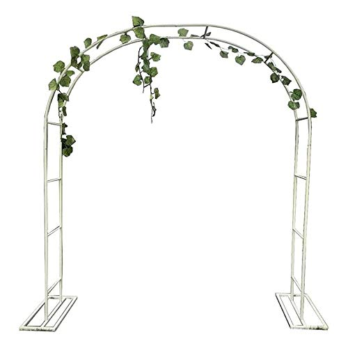 D_HOME Metal Garden Arch Rose Arch,Outdoor Entry Door,Garden Pergola Decor Support For Climbing Flower Plants,Patio Lawn Yard,Weather-Proof,Easy Assembly