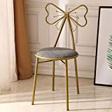 MUITOBOM Vanity Stool, Modern Wrought Iron Makeup Dressing Stool Padded Chair with Bow-Knot Backrest for Girls/Womens Bedroom