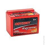 Enersys - Batería de Arranque de Alto Rendimiento Odyssey Extreme PC310 12V 8Ah M4-F