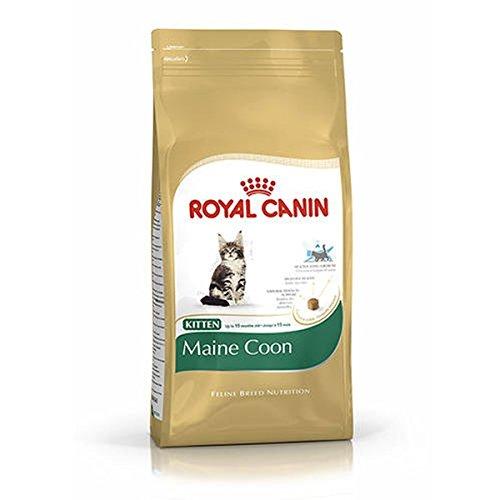 Royal Canin Kitten Maine Coon 4 kg ⭐