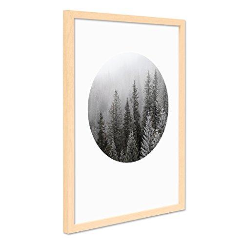 PHOTOLINI Poster mit Bilderrahmen Natur 'Tannenwald' 30x40 cm Foto schwarz-Weiss Natur Landschaft